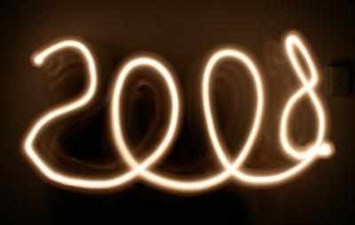 LAS 100 BOLUDECES DEL 2008